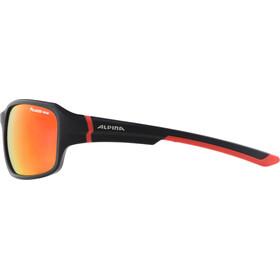 Alpina Lyron P Glasses black matt-red/red mirror
